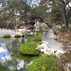 A walkway by the pond, Chinese garden -Huntington Botanical Garden (2/2014 visit)