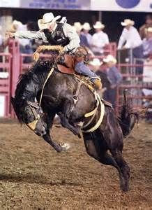 Prca Rodeo Dodge City Ks Photojournalism Pinterest