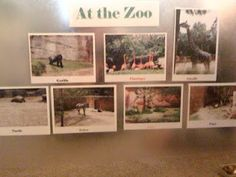 Contact paper over pictures. Also helps to learn animals