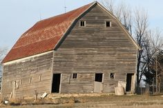 How to Wash Barn Wood --Use an insecticide, such as borax powder, to repel pests and deter fungal growth from occurring in the future.