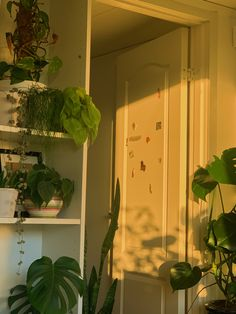 Plant Aesthetic, Aesthetic Room Decor, Room Ideas Bedroom, Bedroom Decor, Images Esthétiques, Room With Plants, Indie Room, Pretty Room, Room Goals
