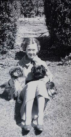 Girl with two pekingeses, Pekingese Dogs, Dog Photos, Old Pictures, Little Babies, Animals And Pets, Lions, Puppies, Vintage Photos, Famous People