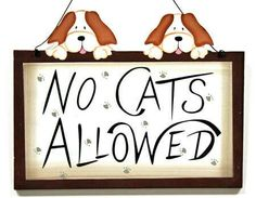 No cat allowed