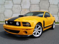 Ford : Mustang Saleen
