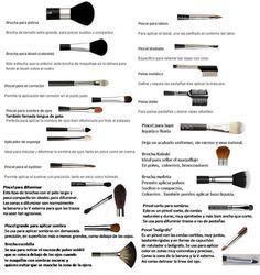 brochas de maquillaje para que sirve cada una