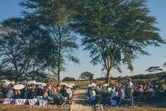Shanna Jones · phinda game reserve : the wedding of carmen and alistair