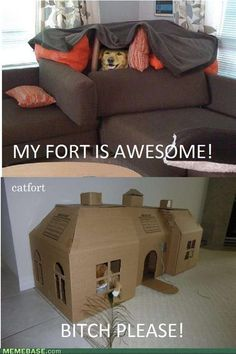 My fort is on the bottom.