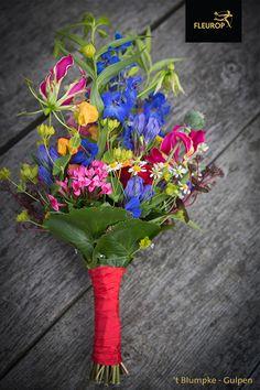 Kleurrijk trouwboeket met een mix aan bloemen. In het trouwboeket zijn o.a. gloriosa, bouvardia en ridderspoor (delphinium) verwerkt. Deze eyecatcher is gemaakt door Fleurop bloemist 't Blumpke uit Gulpen. Globe, Speech Balloon