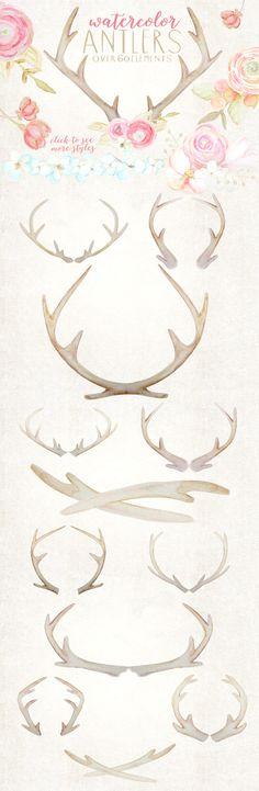 Rustic Watercolor Antlers & Flowers