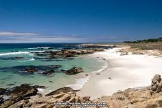 Pebble Beach. This isn't the typical location photo from Pebble Beach, but looks like our favorite play/picnic beach.