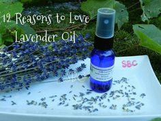 12 reasons to love lavender oil
