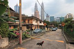 Kuala Lumpur is a city of contrasts.  When I went there many years ago it was completely undeveloped and today it is a modern bustling city of skyscrapers.