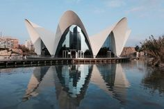 Why Valencia Should Be Your New Favourite European City | Travelettes | Bloglovin'