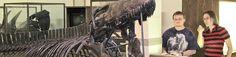 Bones and Stones Petrified Wood, South Dakota, Dinosaurs, Bones, Road Trip, Museum, Black, Black People, Road Trips
