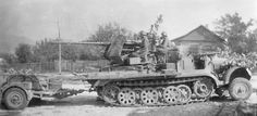 Nice shot of a sdkfz65t with a 37mm flak gun mounted on the rear deck. Its also towing an ammo trailer.