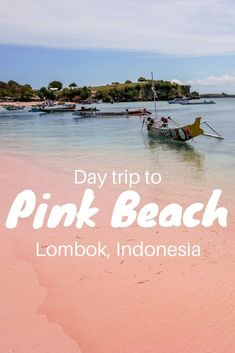 Pink Beach trip in Lombok Scooter drive through the Indonesian countryside, meeting incredibly friendly locals and arriving at the surreal place called Pink Beach. That is what I call a perfect day trip on Lombok Island. Bali Travel Guide, Top Travel Destinations, Asia Travel, Places To Travel, Travel Tips, Travel Videos, Florida Travel, Travel Advisor, Travel Oklahoma