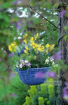 painted hanging basket with spring flowers