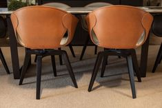 Leather Dining Chairs Ginger from Poltrona Frau
