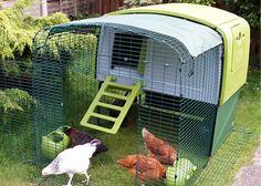 Eglu Cube chicken house in garden with run.