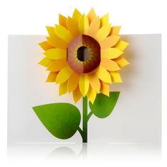pop up cards -flower
