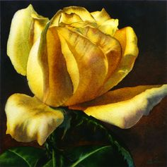 yellow roses paintings - Google Search