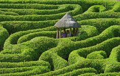 Planted in the 1820s, Glendurgan Gardens Maze would be a nice place to get lost.