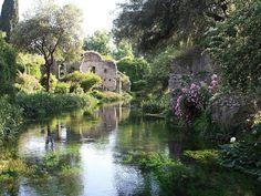 Giardino di Ninfa - Summer garden