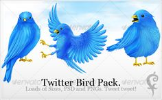 Twitter Bird Pack — Transparent PNG #blue #twitter • Available here → https://graphicriver.net/item/twitter-bird-pack/80911?ref=pxcr