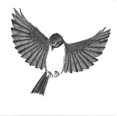flying robin looks down on you original bird ink by piperewan, $50.00