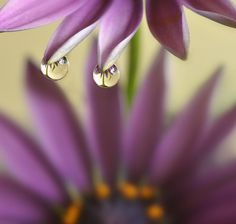 Water Drop Photography - #photography #waterdropphotography #dropreflection