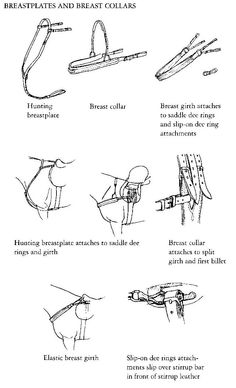 Tack: variations on breast collars for horses