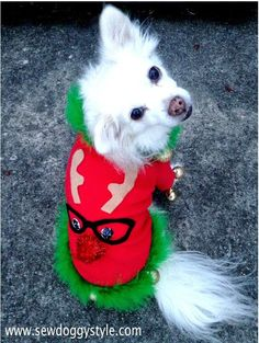 DIY Ugly Christmas Sweater for the Dogs!