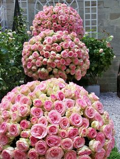 i love the compact roses to create round arrangement, but these flowers are too pink.