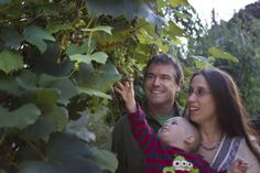 Metro expert Carl Grimm and his wife turn their yard into a demonstration of sustainable choices.