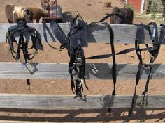 $145 Miniature horse nylon harness with silver hardware