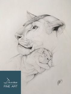 6fbd5b96d Unconditional Love - Mother and Her Cub Pencil Artwork Print, Lioness Wall  Art, Lion Cub Pencil Drawing, Lioness Giclee Print