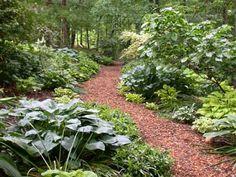 South Carolina Botanical Garden http://www.clemson.edu/public/scbg/sights/gardens/index.html