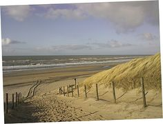 Kustlandschap Langs de Noordzee Beach, Water, Outdoor, Summer Time, Gripe Water, Outdoors, The Beach, Beaches, Outdoor Games