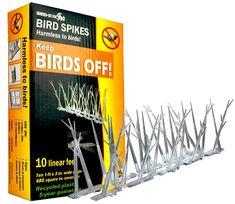 Amazon.com : Bird-X SP-10-NR Plastic Polycarbonate Bird Spikes Kit, Covers 10 feet : Owl Scare Birds : Patio, Lawn & Garden