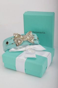 Tiffany&Co.  Aqua Blue Pet Collar  Wedding Pet Accessory