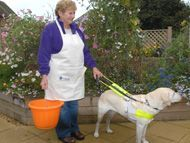 1000 images about disabled gardening on pinterest for Gardening tools for disabled