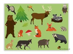 Cliparts Waldtiere von Coramina auf Etsy, €3.60