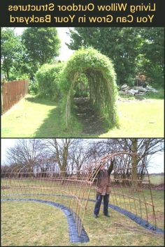 Living Willow outdoor structures that you w .-Living Willow Outdoor-Strukturen, die Sie in Ihrem Garten wachsen lassen Living Willow Outdoor structures that let you grow in your garden - Outdoor Projects, Garden Projects, Backyard Projects, Garden Crafts, Garden Structures, Outdoor Structures, Living Willow, Dream Garden, Garden Planning