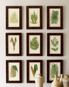 DIY idea: frame pressed botanicals