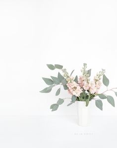 Flowers white green vase 40 ideas for 2019 Amazing Flowers, Beautiful Flowers, Simple Flowers, Spring Flowers, Flowers Nature, Green Flowers, Flower Power, Flower Arrangements Simple, Green Vase