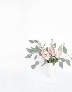 Fresh Blooms | Oh So Pretty