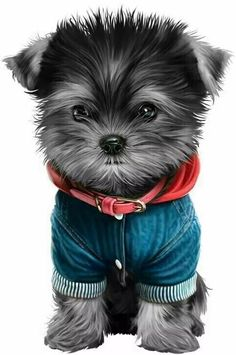 Cute Animals Images, Super Cute Animals, Cute Little Animals, Little Dogs, Animals And Pets, Cute Animal Drawings, Cute Drawings, Dog Pictures, Cute Pictures