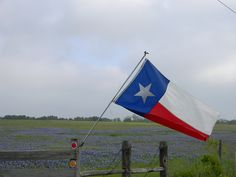 Bluebonnets & Texas Flag.  I took this picture near LaGrange this past weekend.