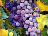 Grapes and Leaves | Mary Gibbs Art