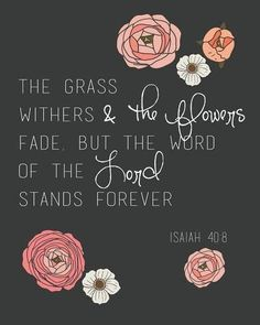 Bible Scripture from Isaiah 40:8. The Word of the Lord stands forever. Amen.